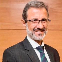 Luiz Ayoub